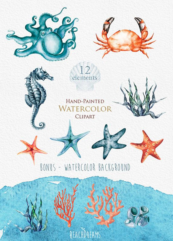 Elemental clipart nautical On Crab clipart watercolor 20+