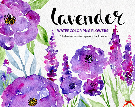 Element clipart purple watercolor floral Rose clipart purple Art Watercolor