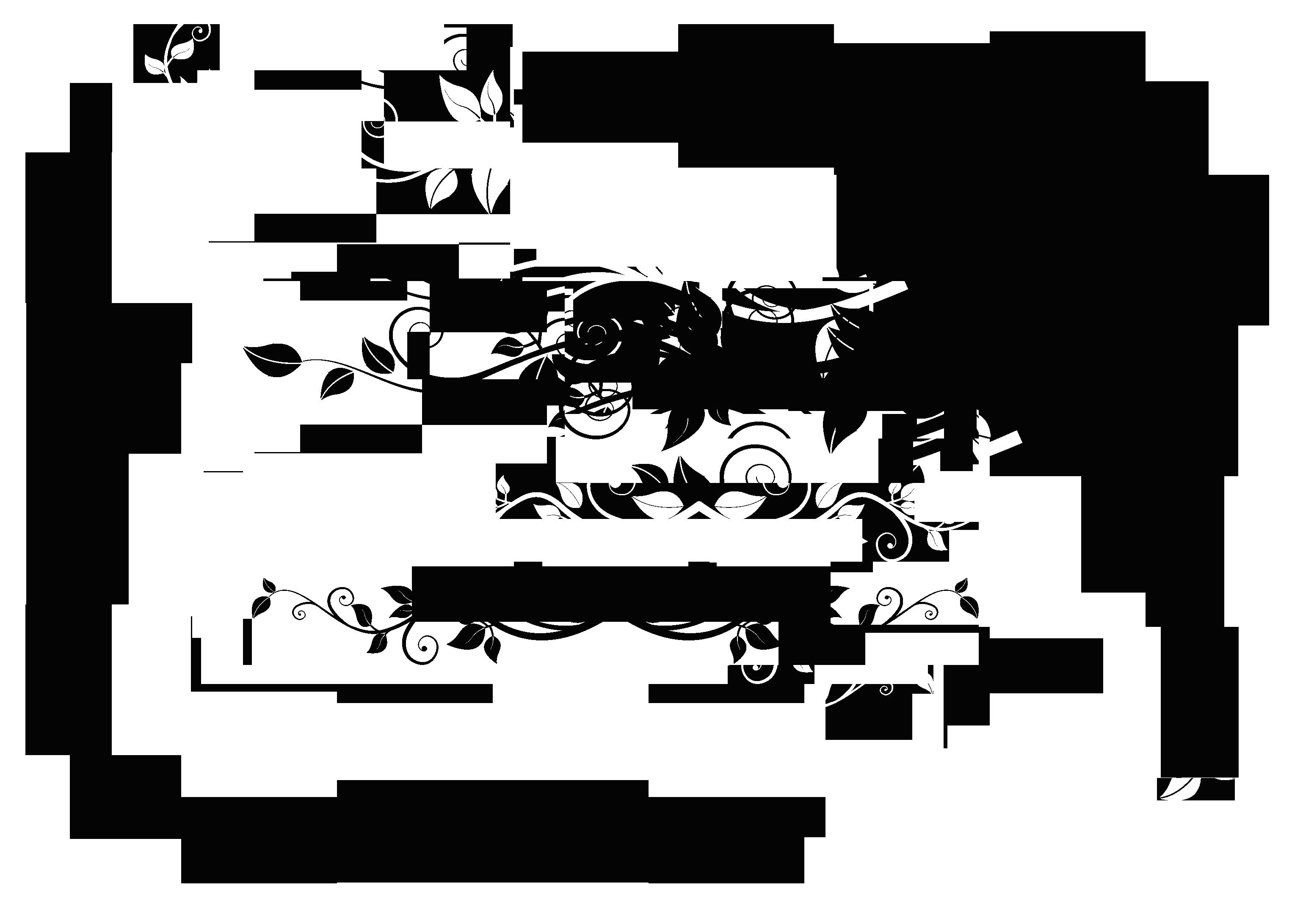 Elements clipart decorative Clipart PNG Download Picture Deco