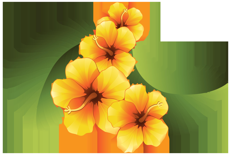 Orange Flower clipart decorative PNG Floral View  Decoration