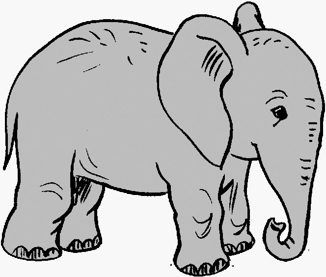 Asian Elephant clipart circus elephant Illustration stock outline  art