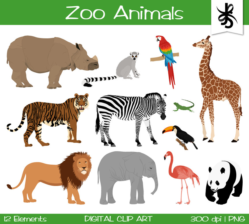 Zoo clipart lion tiger Tiger Tucan Elephant is digital