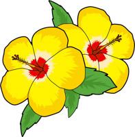 Flower clipart Size: Flower Illustrations Clip Graphics