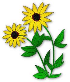 Elower clipart black eyed susan Susan Flower Graphics Clipart clipart