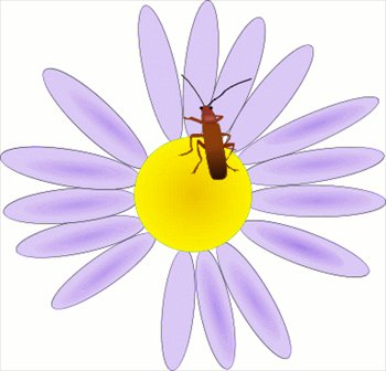 Bugs clipart flowery And flower a  a