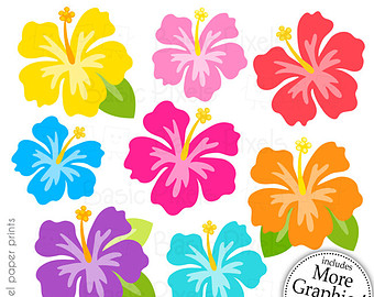 Yellow Flower clipart hibiscus flower Flower commercial use clipart Hibiscus