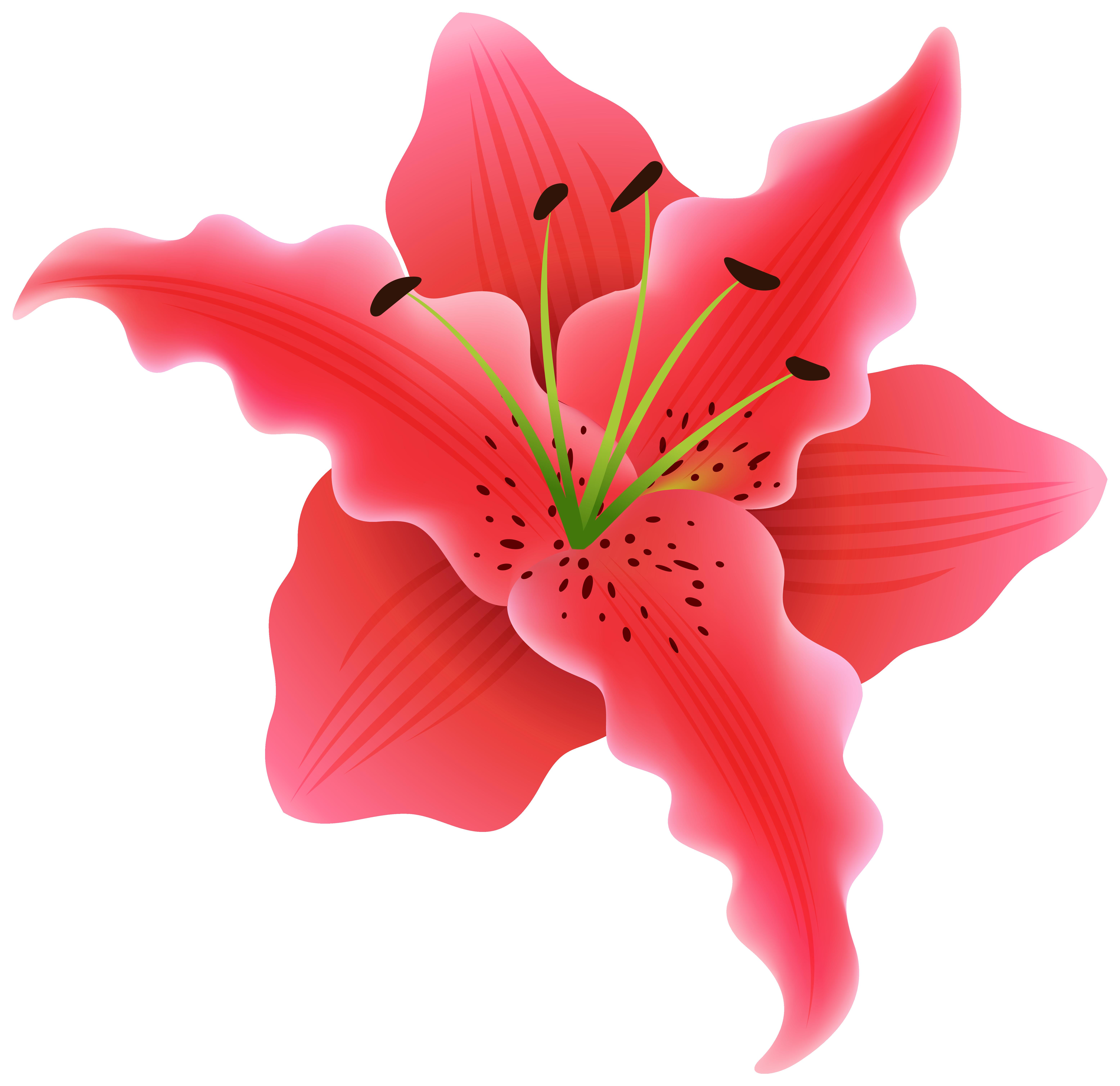 Beautiful clipart beautiful flower Clipart PNG Gallery Beautiful full