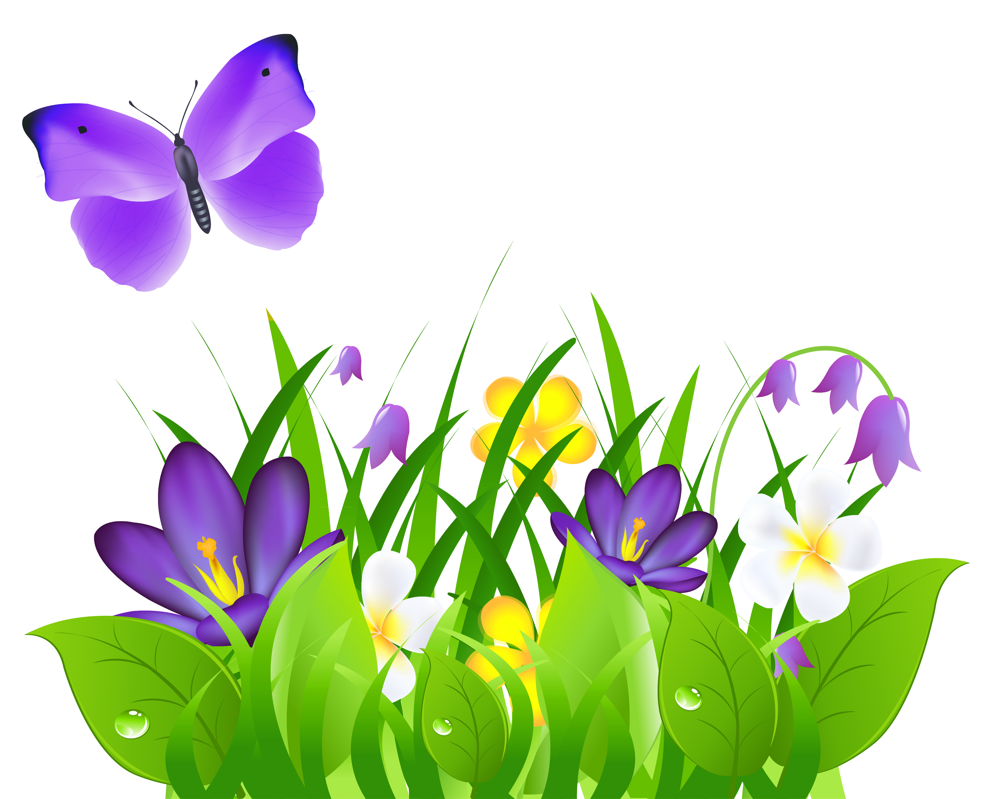 Tulip clipart butterfly #4