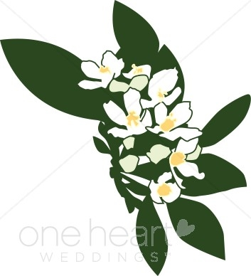 Elower clipart sampaguita Clipart Flower Sampaguita com Flower