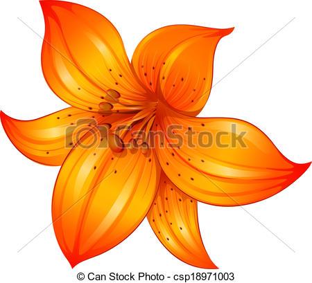 Orange Flower clipart orange color De Tiger Gallery Lirio en