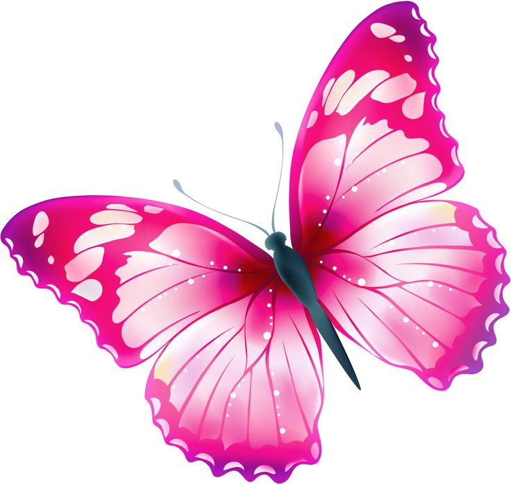 Emo clipart butterfly #5