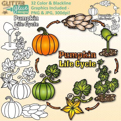 End clipart colorful Art Pumpkin Graphics Plant on
