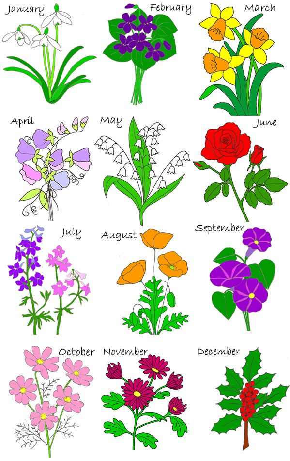 End clipart june flower Blooming January on flower birth