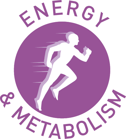 Energy clipart body energy Gain that the is Health