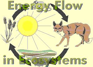 Energy clipart environmental science Ecology Pinterest on  Earth
