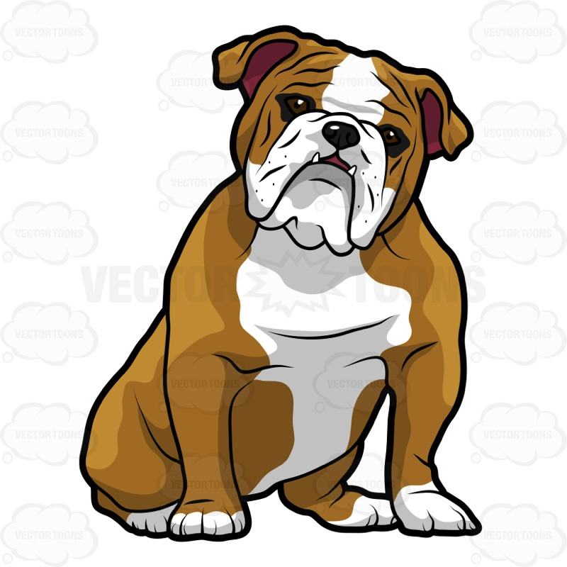 Sketch clipart british bulldog Google line English drawing drawing
