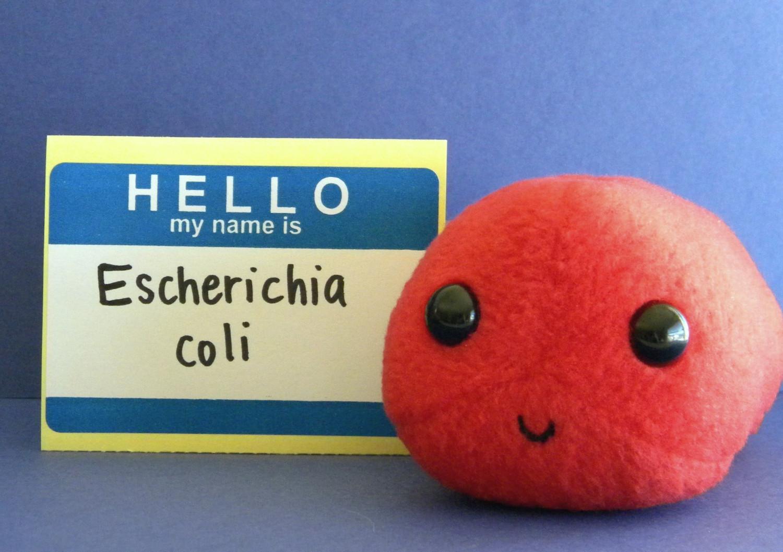 Escherichia Coli clipart cute Microbe E coli Plush