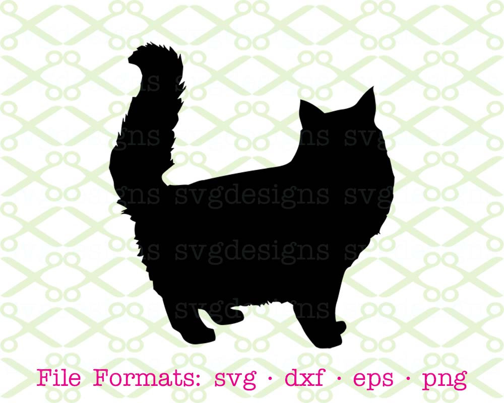 Furry clipart persian cat #3