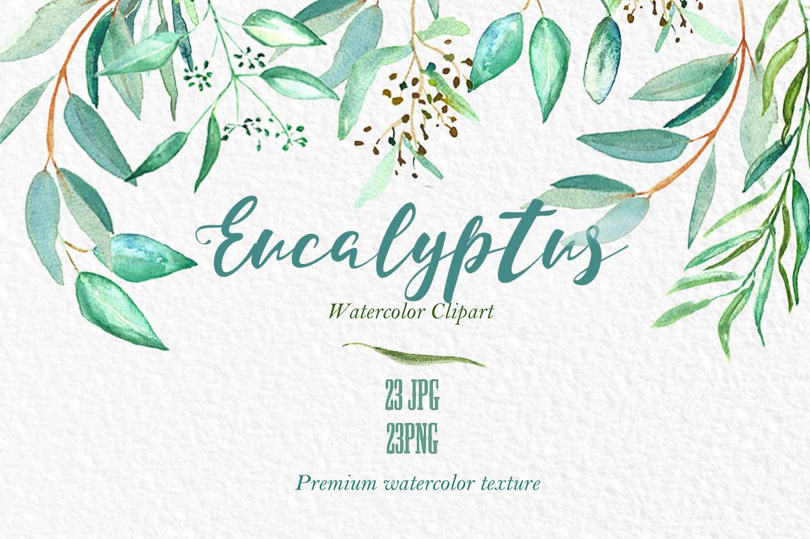 Eucalyptus clipart Pinteres… like eucalyptus eucalyptus …
