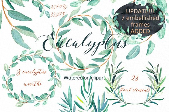 Eucalyptus clipart Illustrations on Watercolor clipart clipart