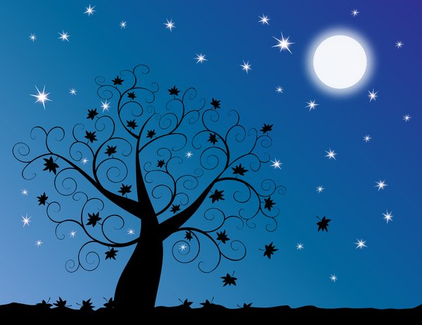 Night Sky clipart evening #15