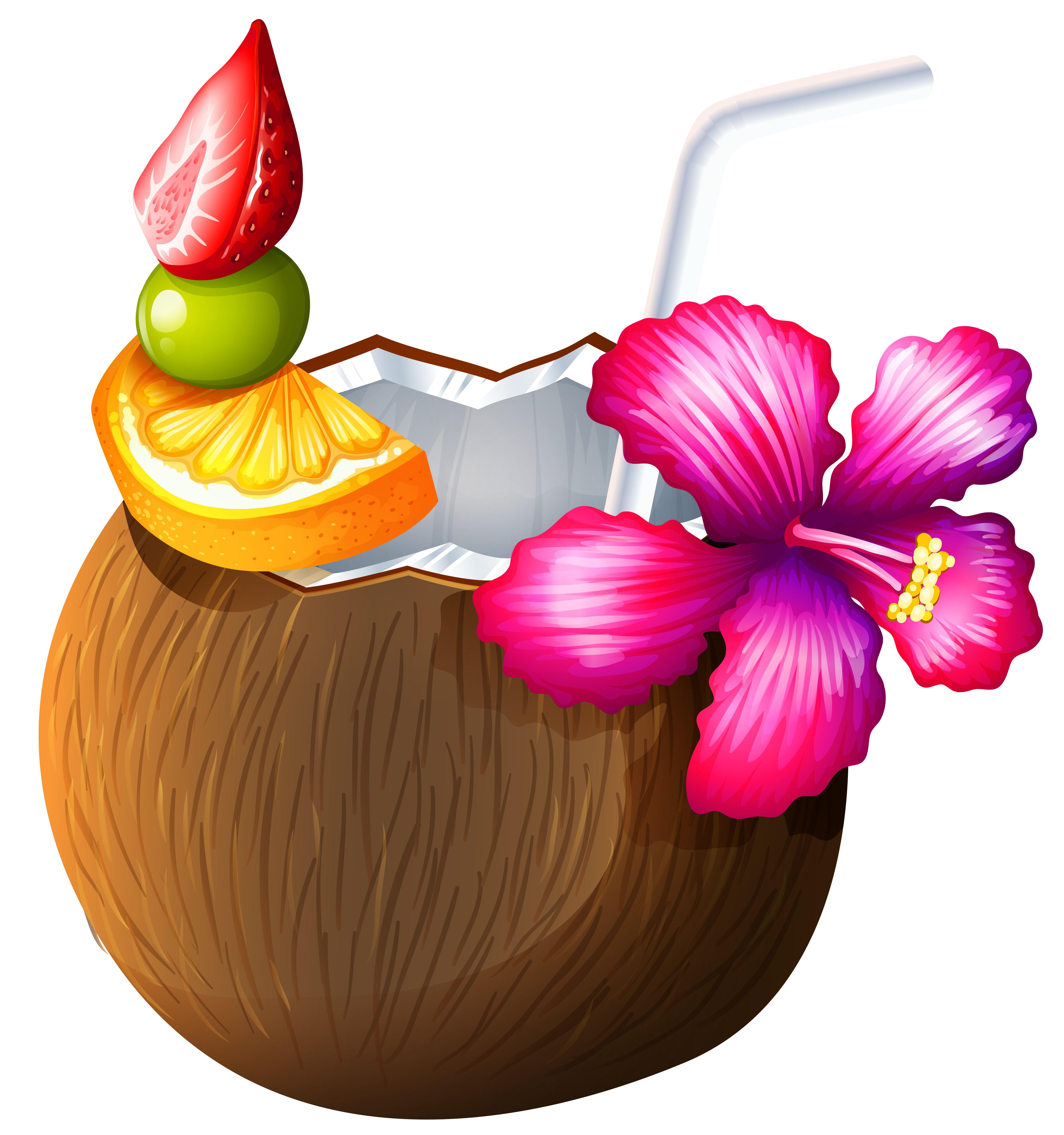 Exotic clipart View Coconut  Yopriceville Cocktail