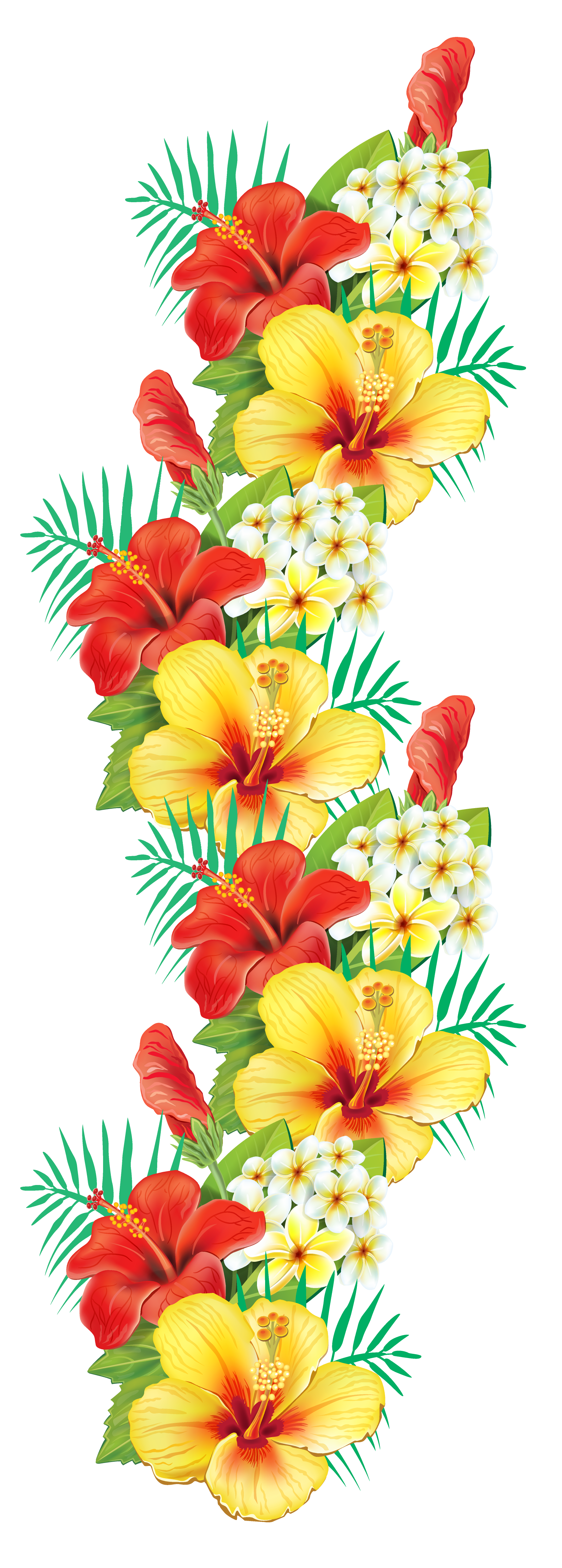 Exotic clipart View Flowers  Yopriceville Decor