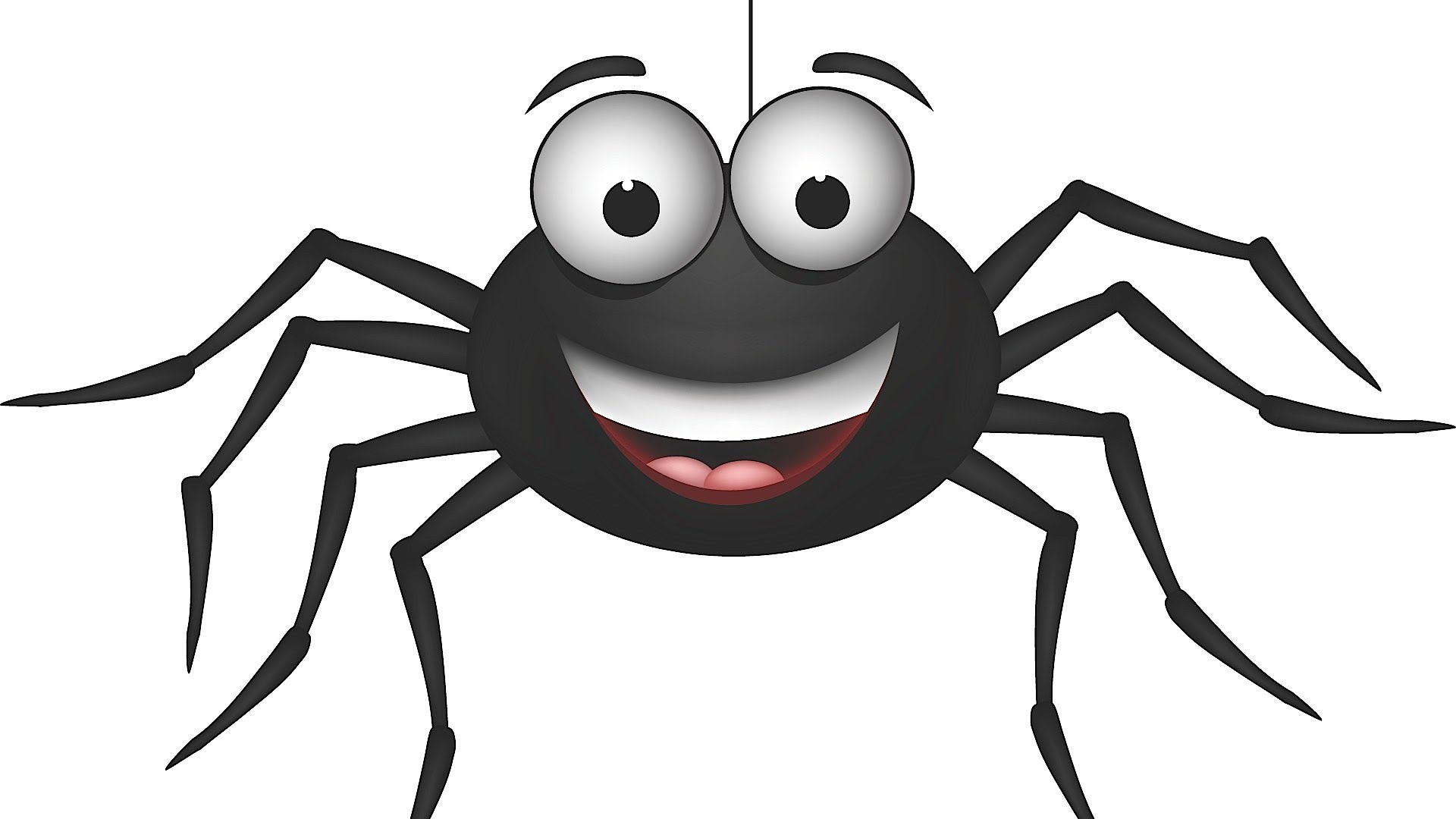 Arachnid clipart friendly spider Facts YouTube  Spiders About