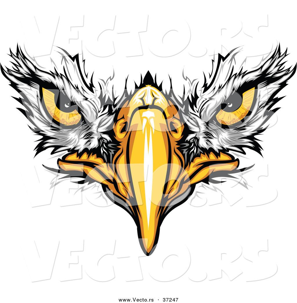 Football clipart hawk #4
