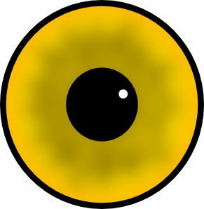 Eyeball clipart gut 126 IRIDOLOGY to Anxiety the