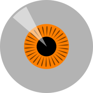 Eyeball clipart owl eyes Eye  Clip Clker Clip