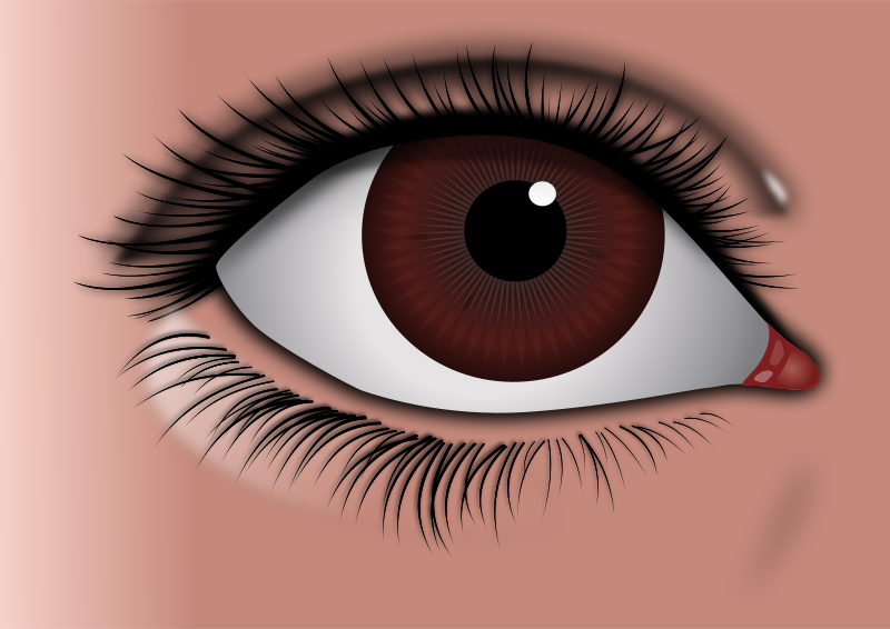 Brown Eyes clipart big eye Download drawings clipart clipart #20