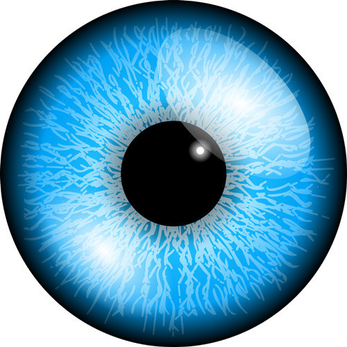 Blue Eyes clipart realistic Search perfect Eye to no