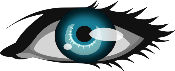 Blue Eyes clipart eyeball Of Search Clipart Clip Free