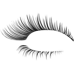 Eyelash clipart cute Eyelashes Cliparts clipart Vectors &