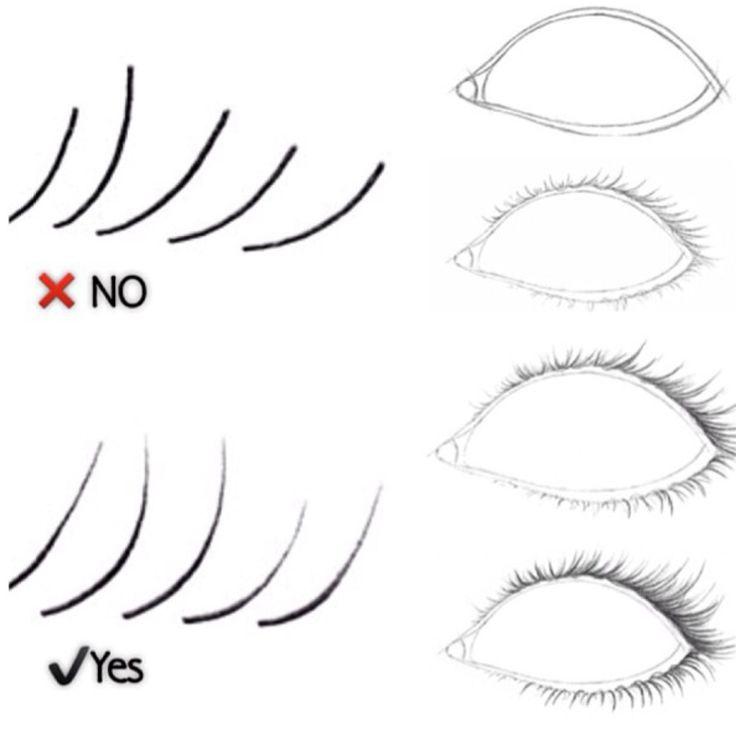 Eyelash clipart drawn To draw Thicker on Best