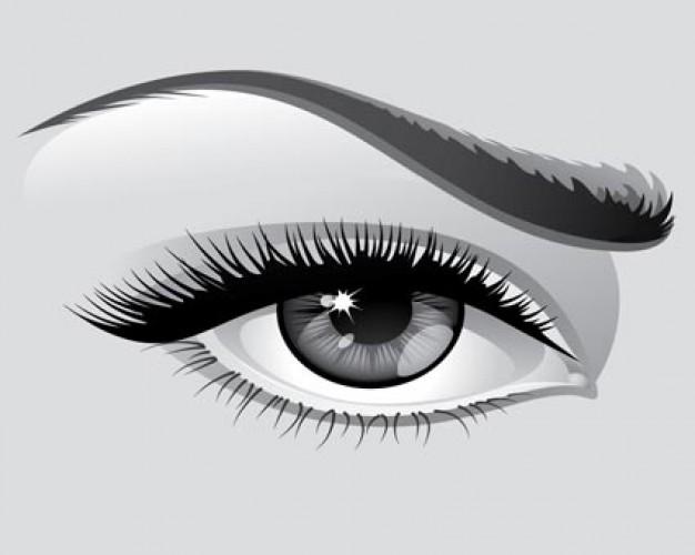 Eyelash clipart eyebrow Clipart Clipart Clipart Eyebrow Eyebrow