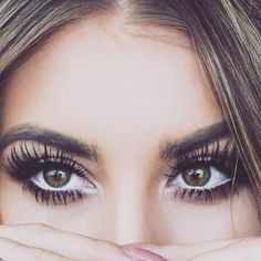 Eyelash clipart eyebrow Hollywood Eyelash exquisite Eyelash Art