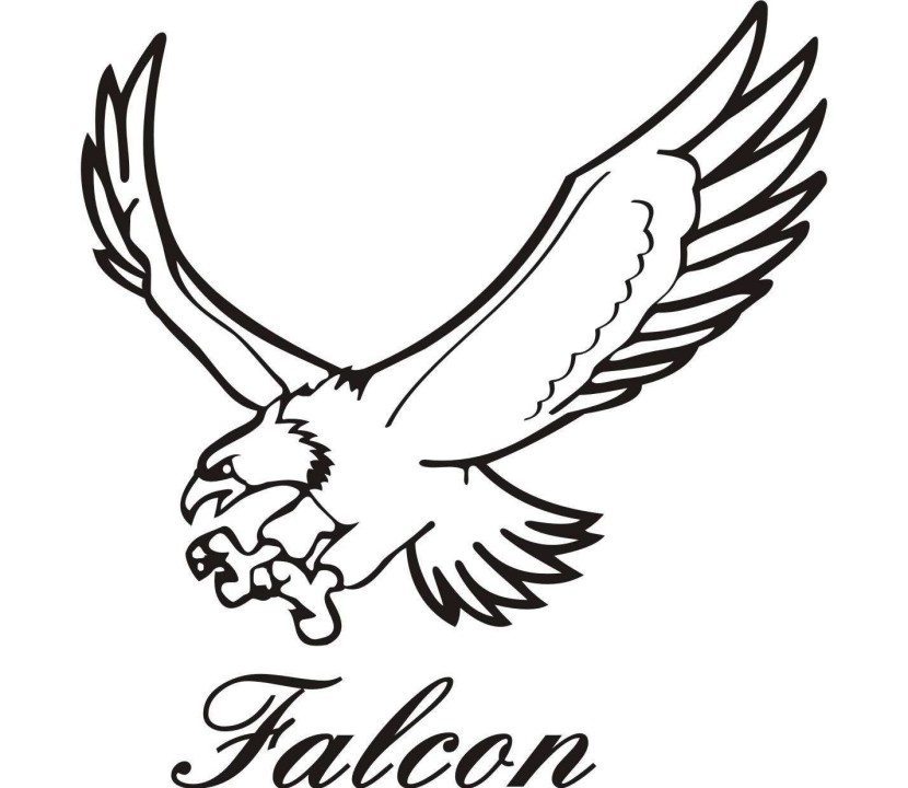 Falcon clipart Drawings Falcon Download clipart clipart