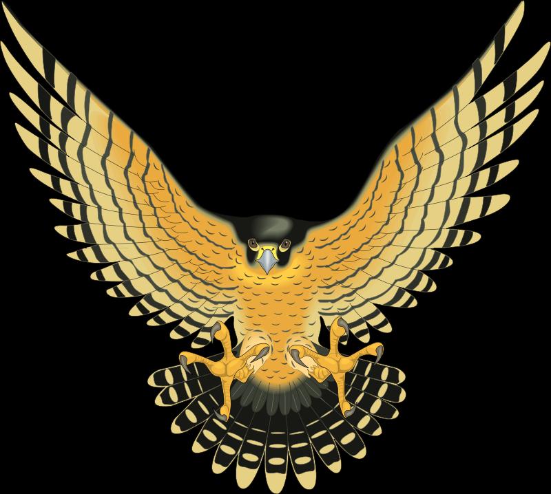 Bird Of Prey clipart vector Free Bird 32 Download Bird