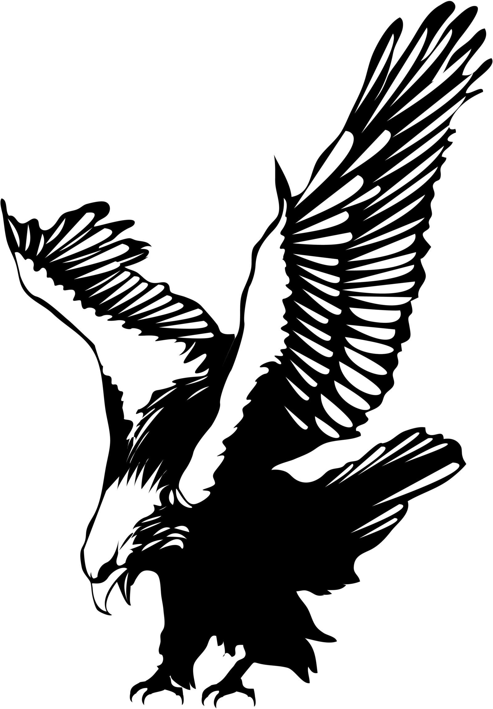 Black Eagle clipart eagle landing Google Google Eagle Search animl