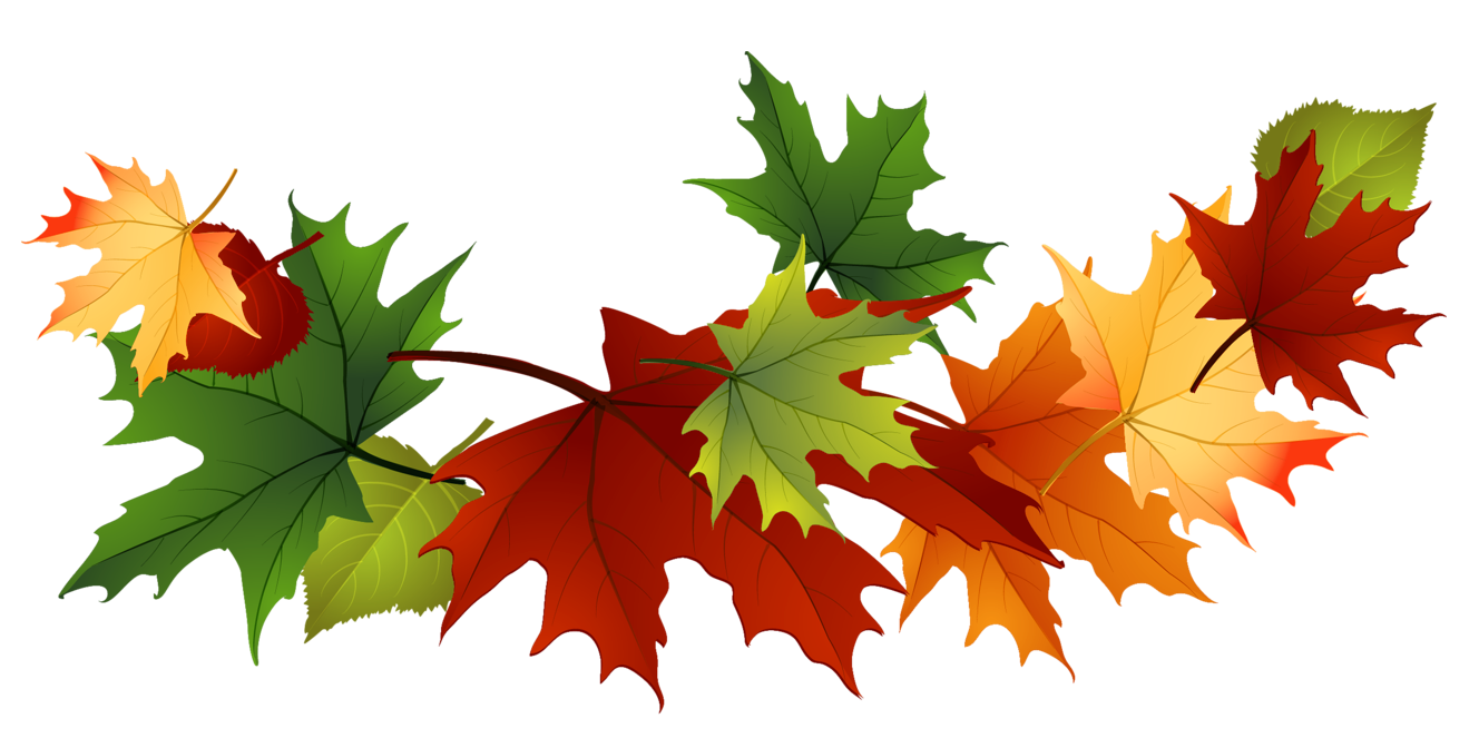 Beautiful clipart autumn flower Leaves Free fall 3 Clip
