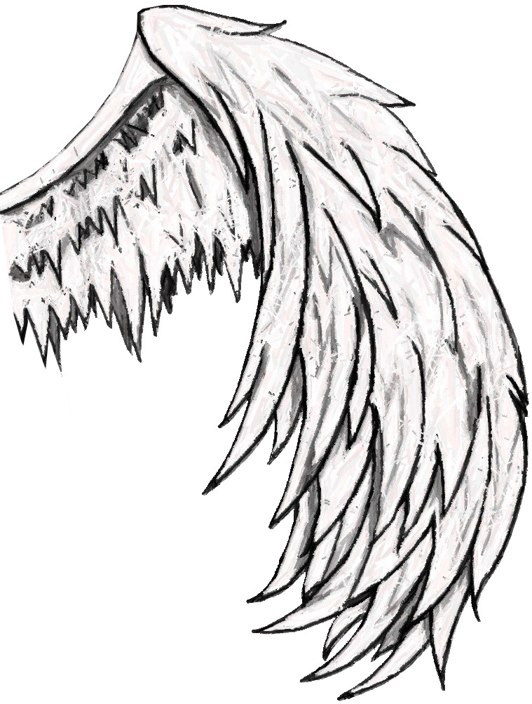 Wings clipart detailed Clip Angel Download Wing Wings
