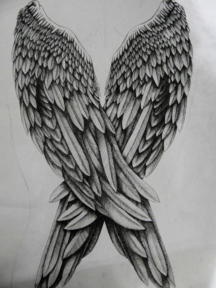 Drawn angel back DeviantArt by 20+ drawing on