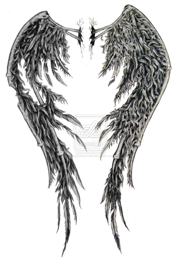 Drawn angel torn wing #2