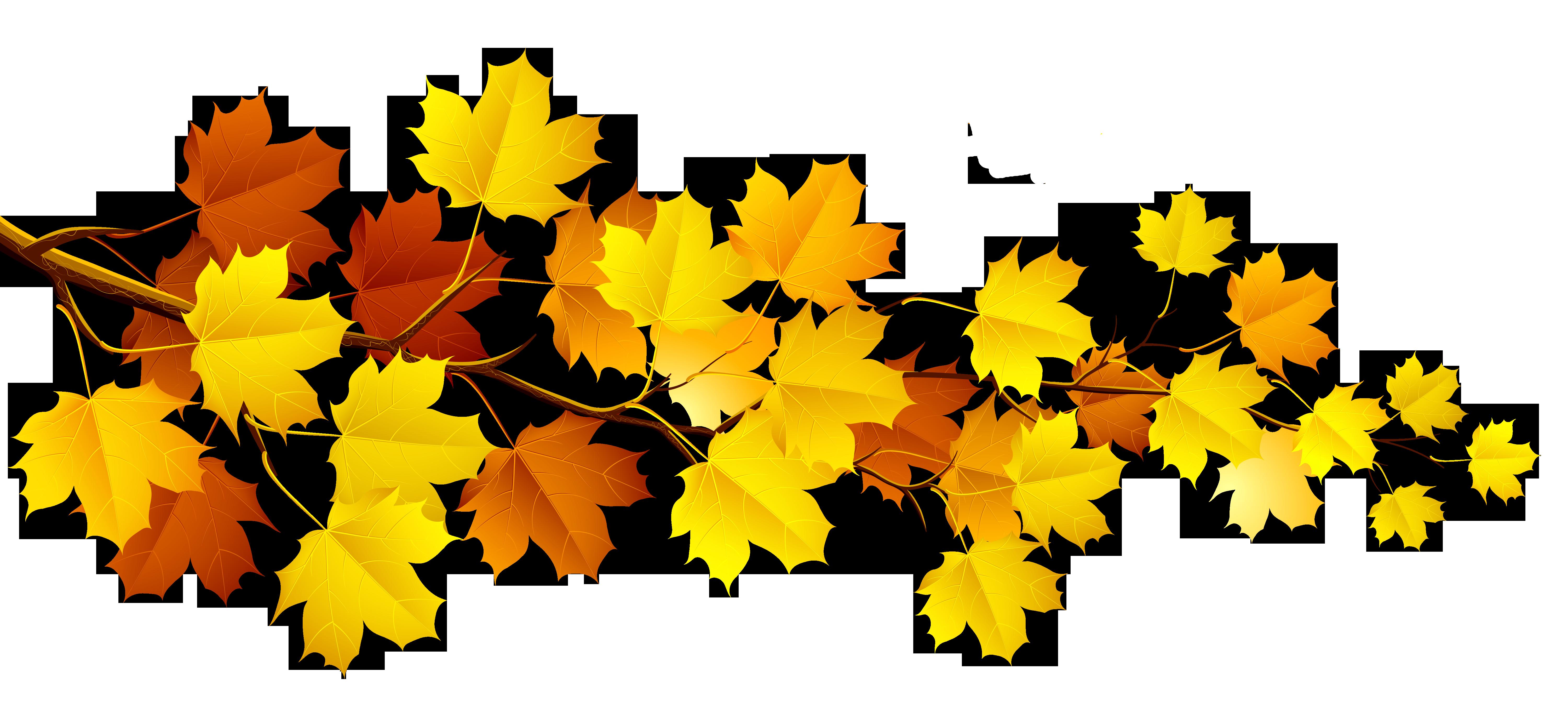 Leaves clipart autumn leaves Leaf clip images outline Autumn
