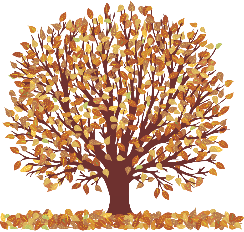 Branch clipart fall leaves Tumblr collection tree Collection clipart