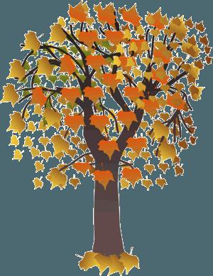 Tree clipart autum #5