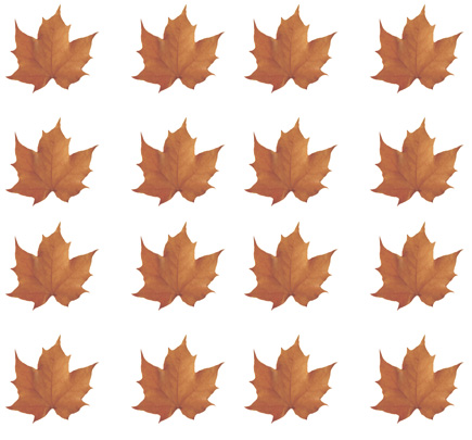 Leaves clipart fall season Fall leaves Leaves Graphics Autumn