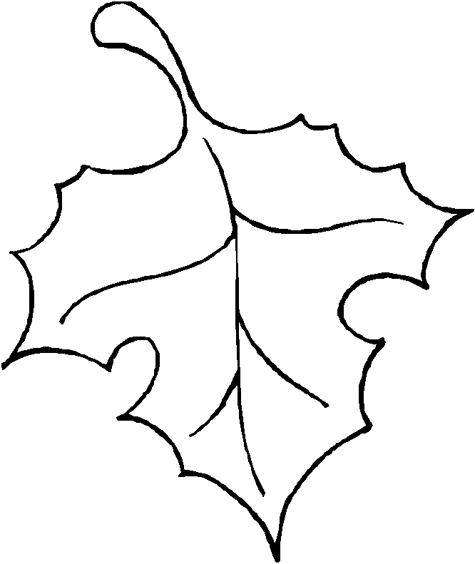 Drawn pumpkin leaf Art Outline ClipArt Free